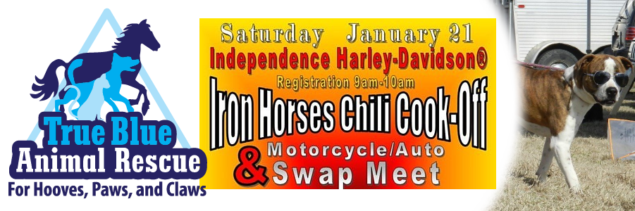 Chili Cook Off Banner