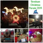 True Blue Animal Rescue Brenham Christmas Parade 2014 Results