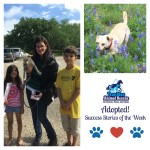 True Blue Animal Rescue Success Story Olaf