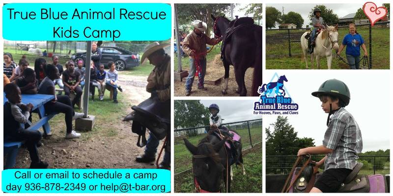 True-Blue-Animal-Rescue-Read-Ride-Kids-Camp-2016